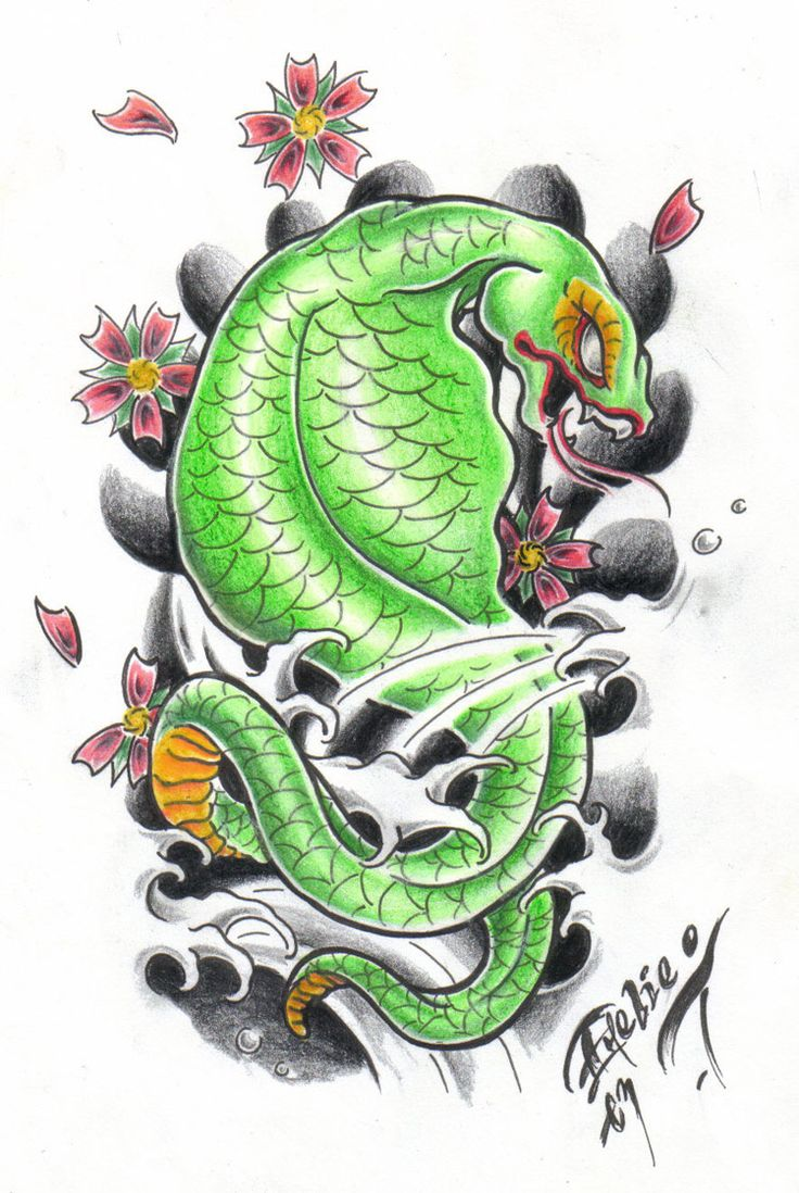 Japanese snake by on