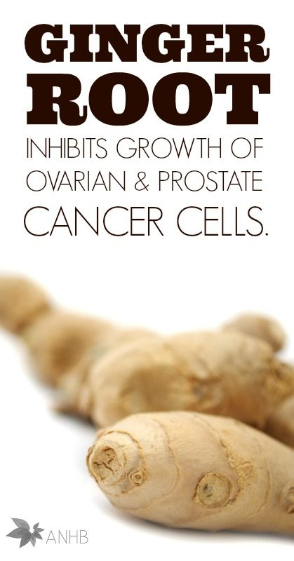Ginger Root Inhibits Growth of Ovarian & Prostate Cancer Cells .... Thanks to research from The University of Michigan, we can now utilize ginger root to not only kill ovarian cancer cells, but also prostate cancer cells with zero toxicity....read more....