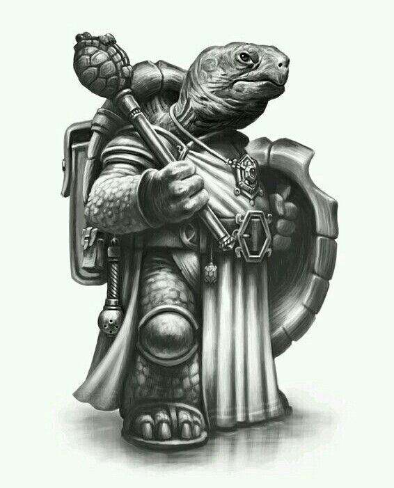 Tortoise warrior