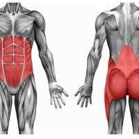 bolesti chrbta..cviky..fyzioteraúeut