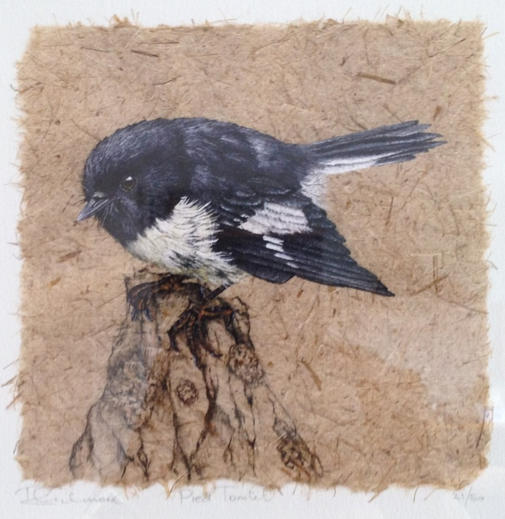 Giclee Print by NZ wildlife artist Rebecca Gilmore. www.endemicgallery.co.nz