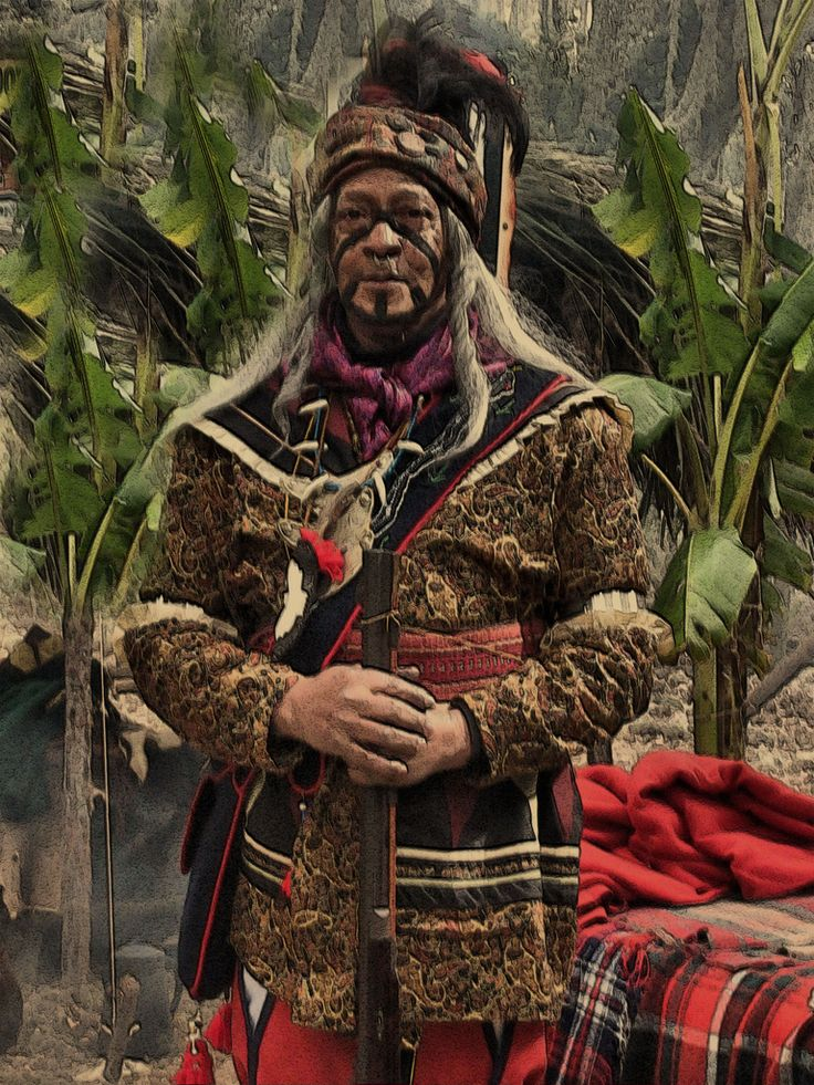 A history of the seminole native american tribes in southeastern north america
