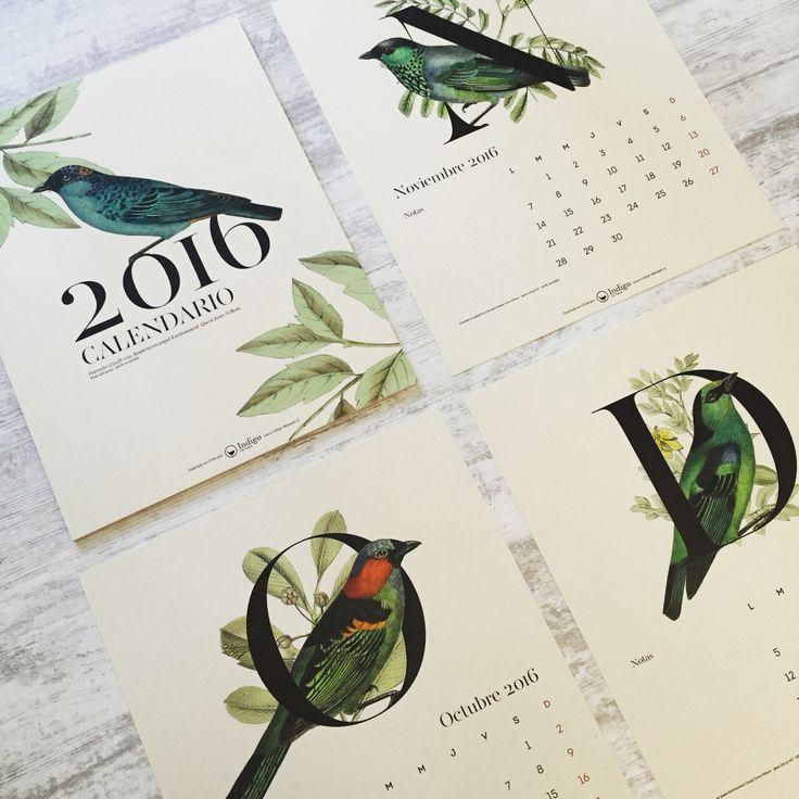 Our bird 2016 Calendar