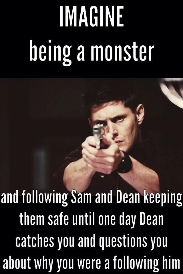 imagine being a hunter with Sam and Dean then being cursed and turned into a monster and Sam and Dean think you're dead, but your so afraid of hurting them and to ashamed of what you've become to tell them the truth so you follow them trying to keep them safe until...