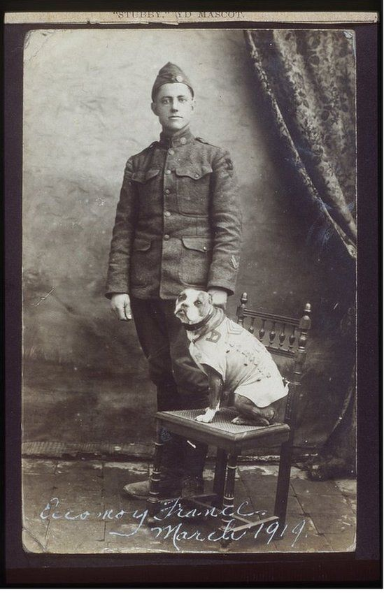 Corporal Robert Conroy and Sergeant Stubby photo portrait Seargent Stubby is a dog who actually got the rank of sergeant