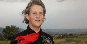 http://autisme.info31.free.fr/?p=2038  pdf à télécharger dans ce site pour autisme et troubles sensoriels par prof. Temple Grandin