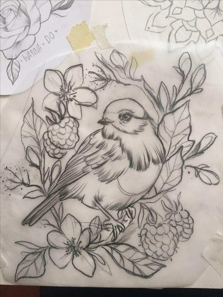 best 25 bird drawings ideas on
