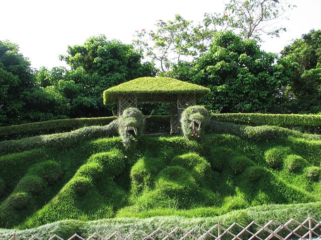 51 best images about dragons the awe of topiary art xd for Xd garden design