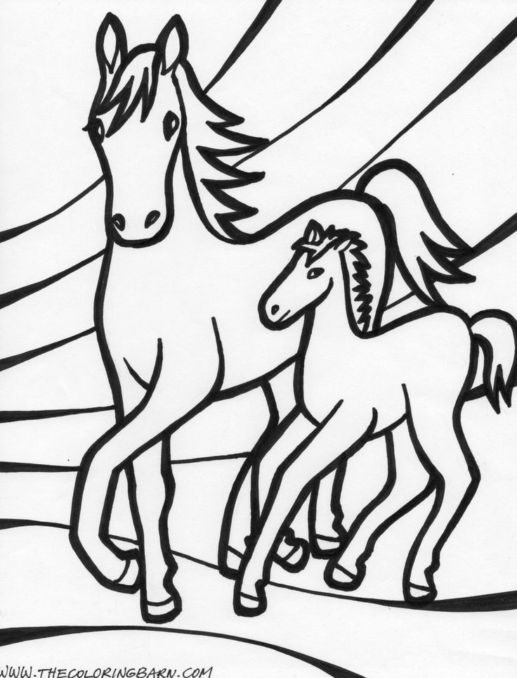 Baby Horses Coloring Pages  Amazing photos  Pinterest  Coloring