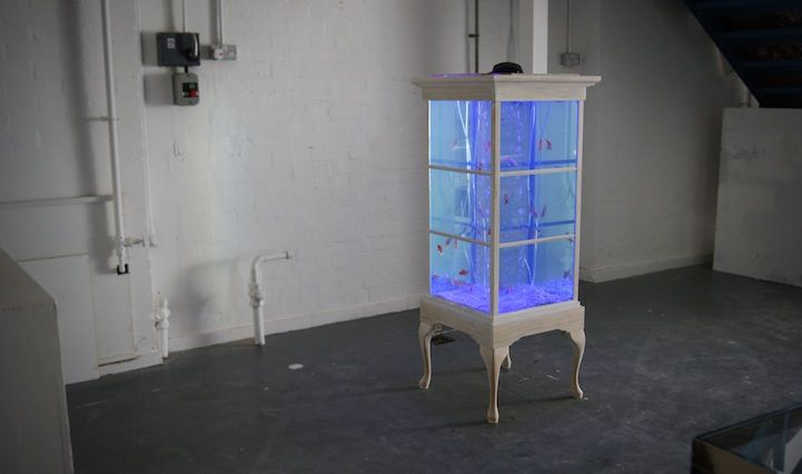 Up-cycling rocks with this Antique Display Cabinet Transformed Into Glowing Fish Tank