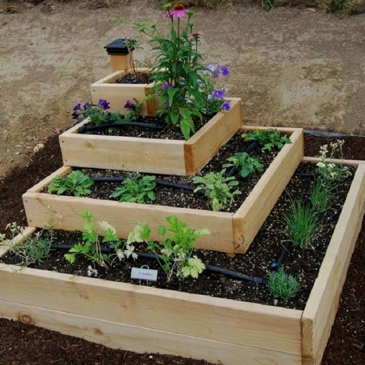 4X4 Raised Bed Vegetable Garden Layout