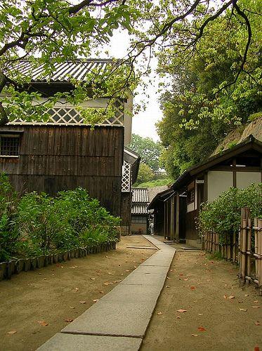 Backyard of Nozaki house #japan #okayama #kurashiki