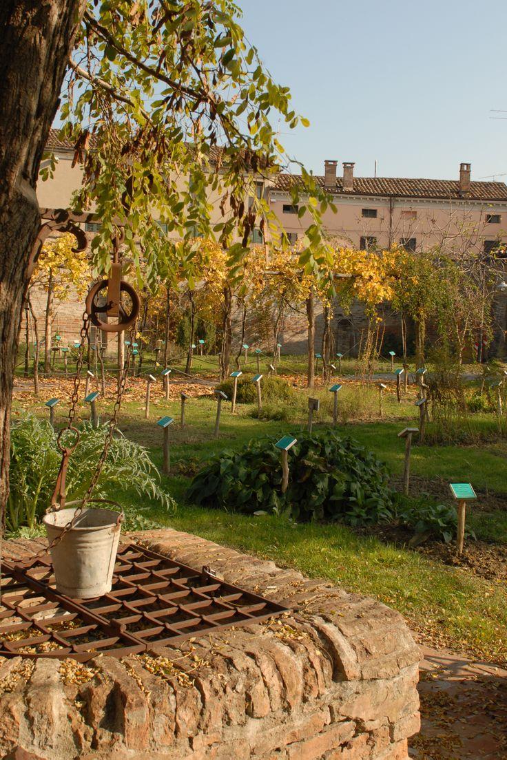 BAGNACAVALLO - Giardino dei Semplici (foto di Angela Pasi)