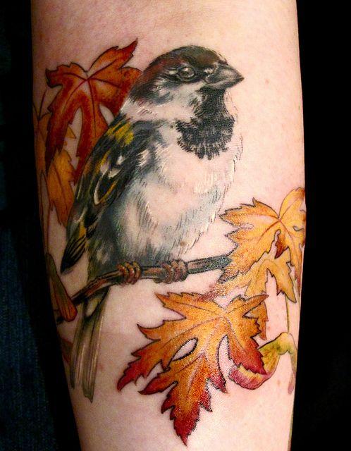 Realistic sparrow tattoo for Realistic tree tattoos