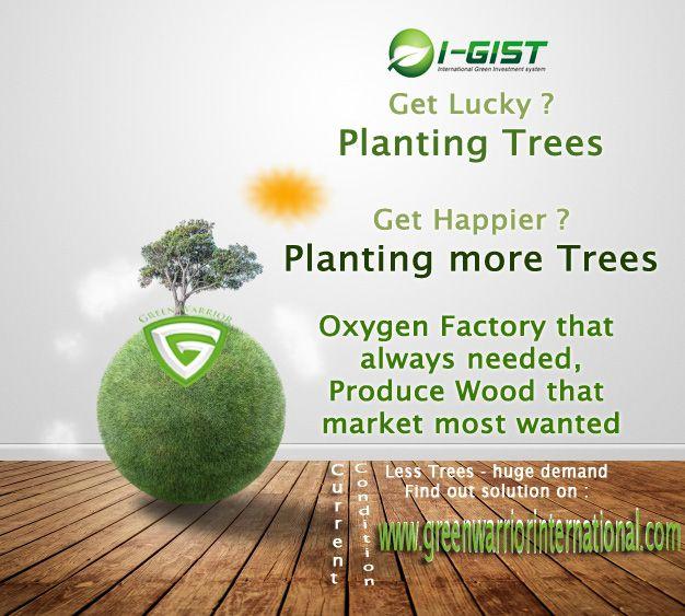 Mari Menanam Pohon :) http://www.greenwarriorindonesia.com