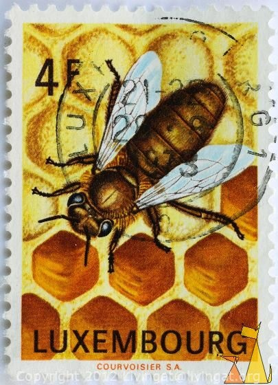 Luxembourg Honey Bee Postage Stamp Bees Ii Pinterest