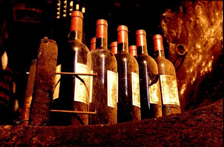 Italienischer #Wein | Italian #Wine