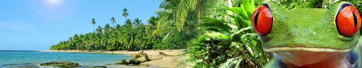 Bill Beard's Costa Rica Scuba Diving & Adventure - http://www.realadventures.com/listings/1025521_Bill-Beards-Costa-Rica-Scuba-Diving-Adventure?A=7072