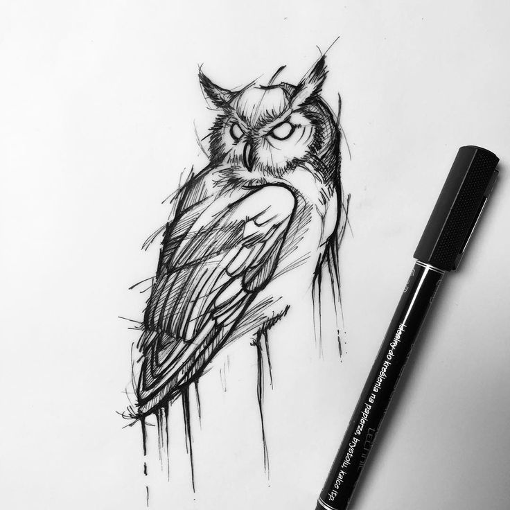 97 Best Owl Siluets Graphic Tatoo ... Images On Pinterest | Owls Owl Tattoos And Tattoo Designs