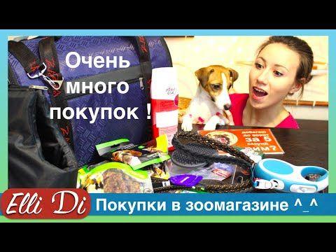 Покупки в зоомагазине для собаки - уход за собакой с Elli Di.