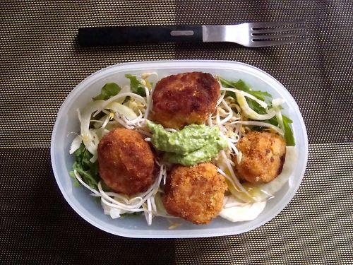 Schiscetta - Polpette di Ceci e Carote con insalata di Finocchi, germogli di Soia con Pesto di Rucola