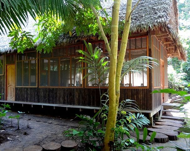 Amazon Ecolodge - Madidi Jungle Ecolodge - Madidi National Park - Bolivia