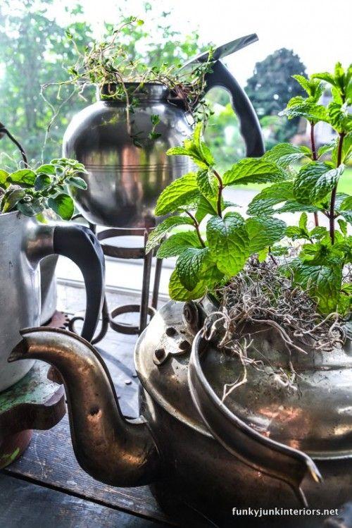 Cool DIY Vintage Tabletop Garden Of Old-Fashioned Kettles | Shelterness