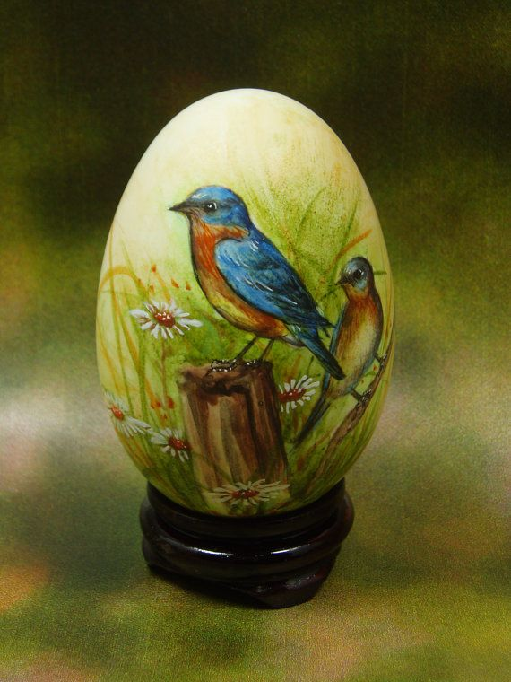 The bluebirds are a group of medium-sized, mostly insectivorous or omnivorous birds in the genus Sialia of the thrish family. Bluebirds are one of the