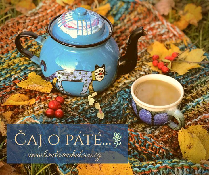 Uplynulé slunečné dny vybízely k prochazkám ve spadaném listí, sběru podzimních plodů a třeba popíjení bylinkového čaje mezi zlatými listy javorů, lip a buků...