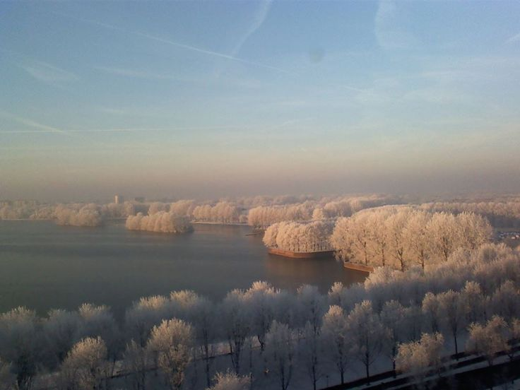Prachtige foto van de Sloterplas in de winter!