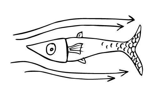 Fisk.gif