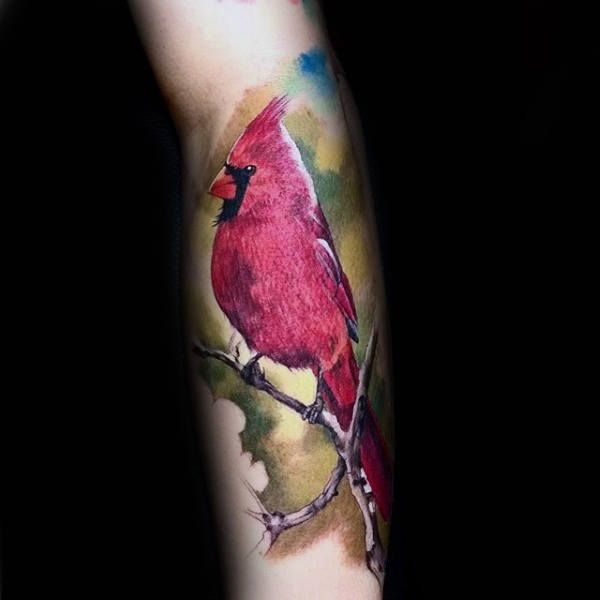 Image Result For Realistic Cardinal Tattoo Cardinal Tattoos Tattoos Design My Tattoo