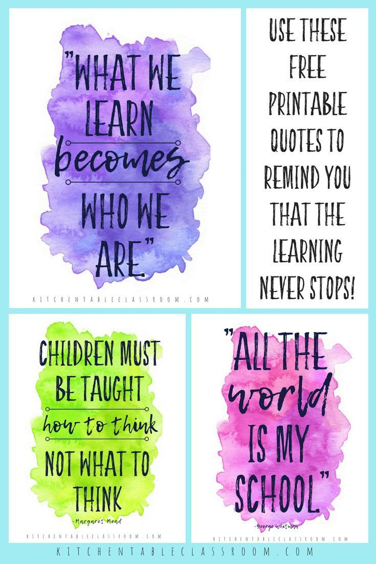 Quotes about Learning for Your Home & Classroom