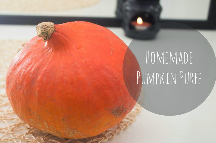 Have you ever thought about making pumpkin puree?The recipe's on my blog! :) Berry The Blue: Homemade Pumpkin Puree #blog #fall #autumn #pumpkin #diy #recipes