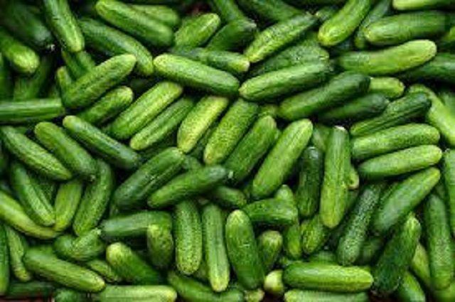 Befőttek, kompótok, savanyúság receptek » Blog Archive » Ropogós uborka