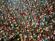 Eierbaum Saalfeld - German family decorates apple tree with decorated eggshells