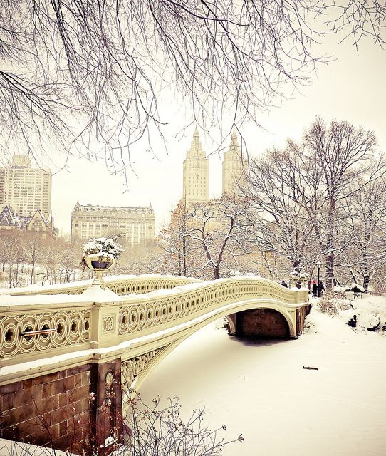 Central Park Winter - Snow at Bow Bridge - New York City-- by Vivienne Gucwa, via Flickr