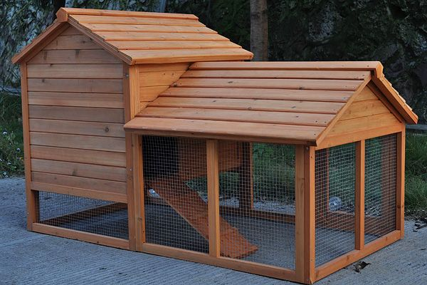 Best 25 rabbit hutch for sale ideas on pinterest bunny for Diy guinea pig cages for sale