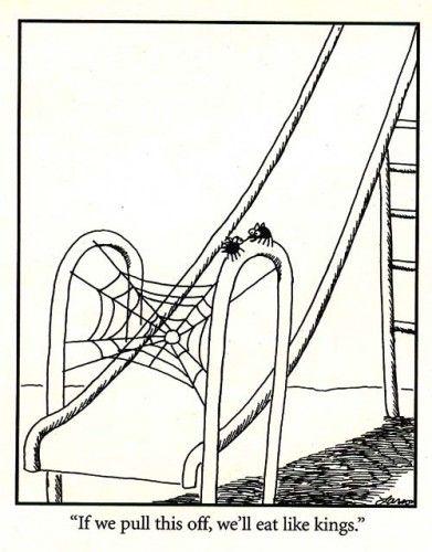 Spiders on slide