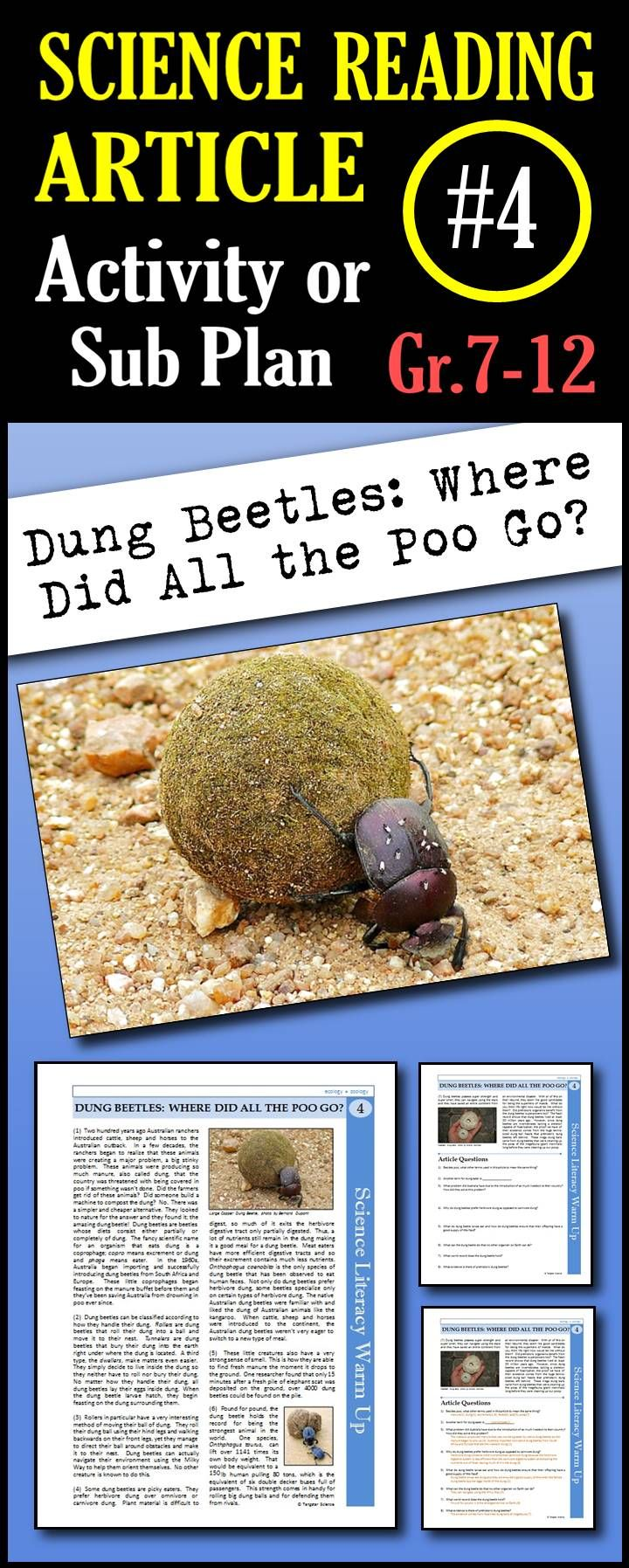 In this article, students will read about the interesting habits, diet and behaviors of the dung beetle. They will also learn about why dung beetles are important to ecosystems.  This is a great in class activity, homework assignment, weekly science reading assignment, sub plan or in school suspension plan.  Use this to save time looking for engaging and appropriate articles with questions!