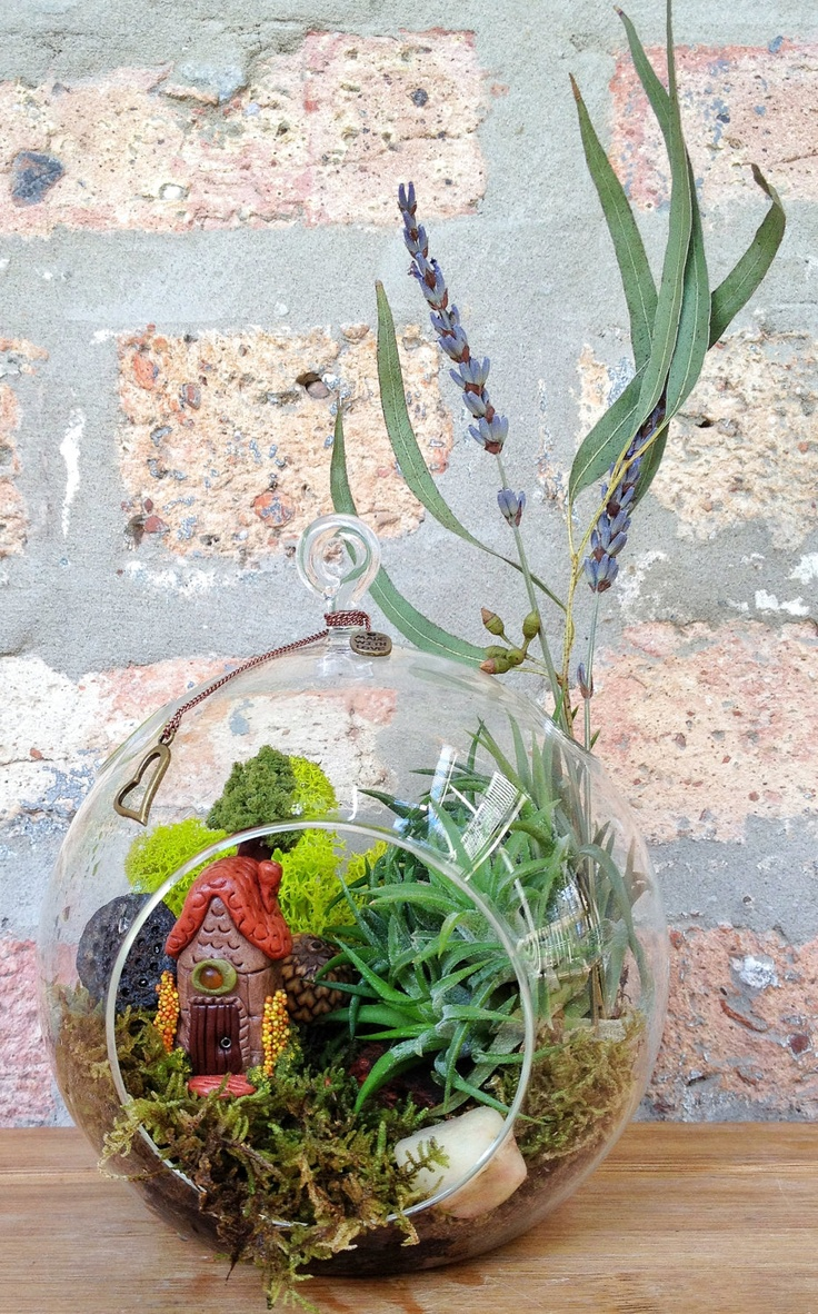Handmade Fairy House and Air Plant Terrarium - A unique birthday or  housewarming gift. Charm is INCLUDED