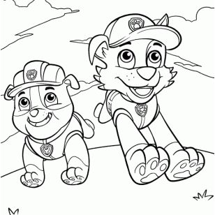 50 best patrulla canina images on Pinterest  Drawings Paw patrol