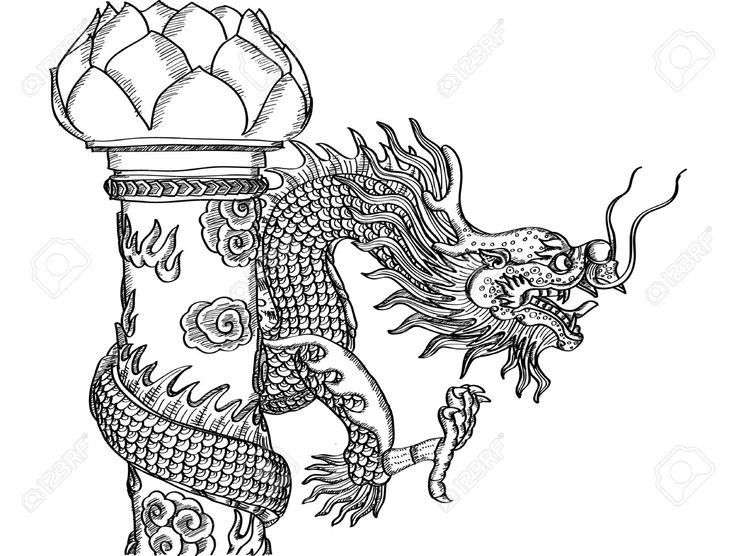 best dragon coloring images on pinterest  drawings