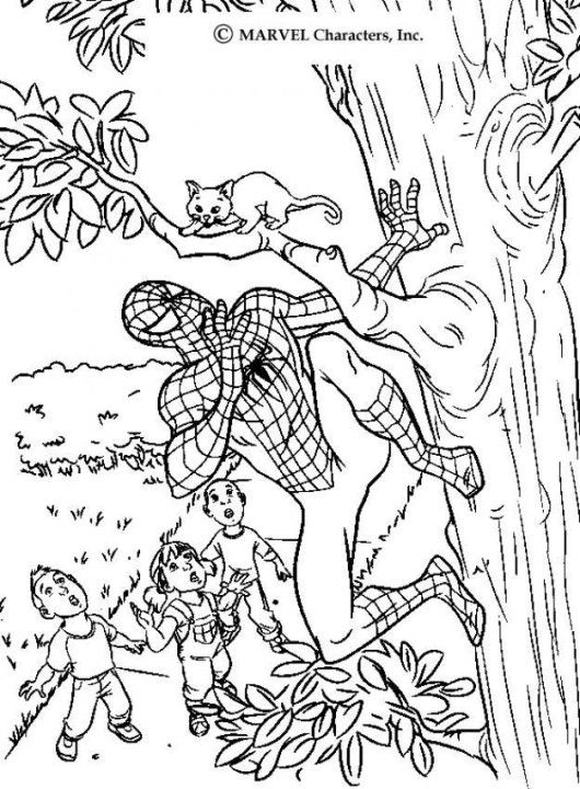 black cat spiderman coloring pages - photo#16