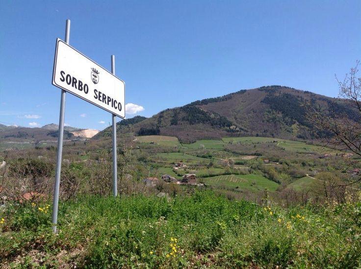 Azienda vinicola Feudi di San Gregorio (Sorbo Serpico, Italy): Top Tips Before You Go - TripAdvisor