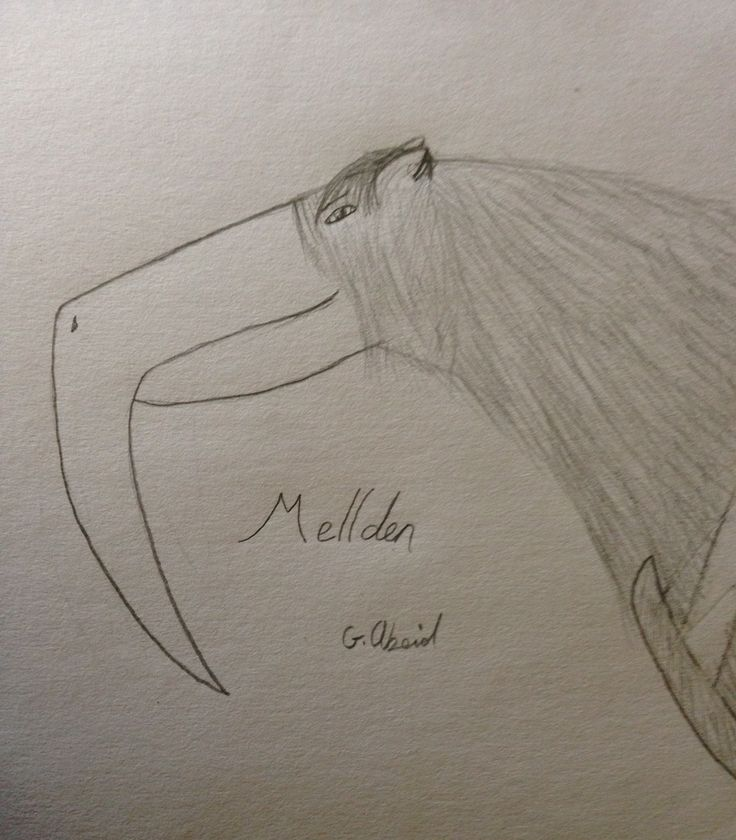 This is Mellden Galldarla, she's one of my oldest characters, and my most dearest character. Most of my stories are about her