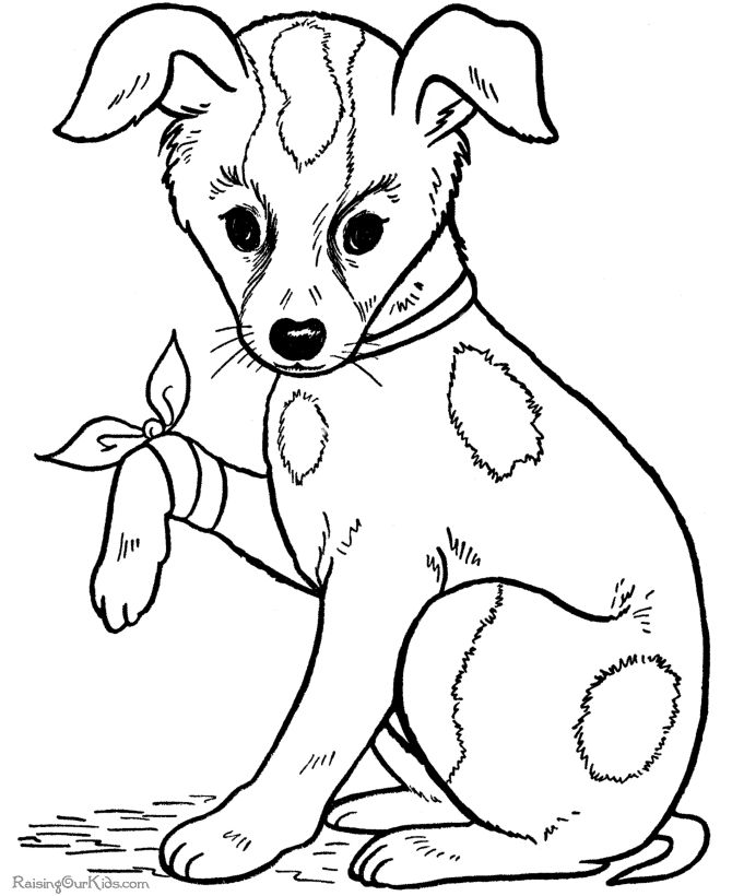 big coloring pages of animals free dog coloring pages for kid