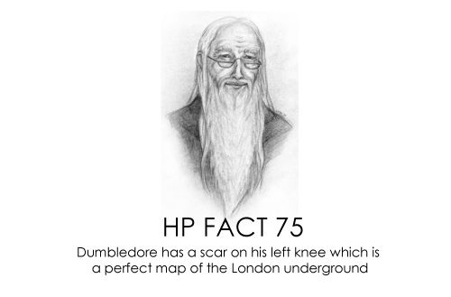 HP facts  Dumbledores scar  HP  Pinterest  Hp facts Harry
