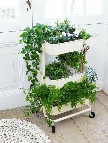 Ikea raskog cart with plants