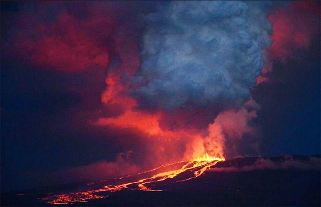 Erupciona Un Volcán En Santuario De Iguanas Rosadas En Las Islas Galápagos